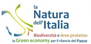 Biodiversconvegno2013
