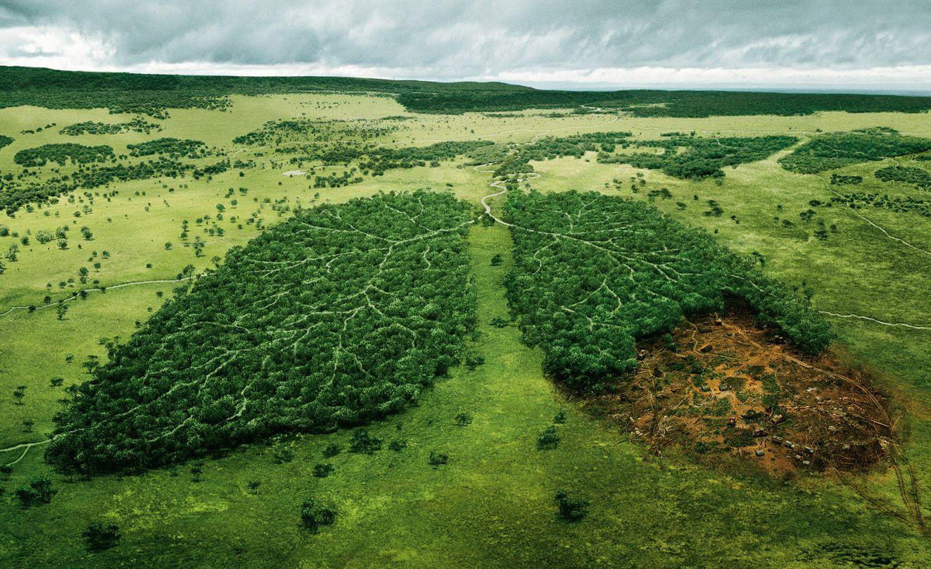 Spesa ambientale, nel 2011 ammonta a 4.094 milioni di euro