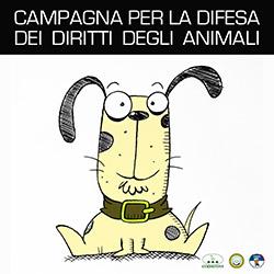 Campagna diritti degli animali
