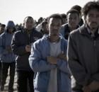 immigrazione sicilia scandalo